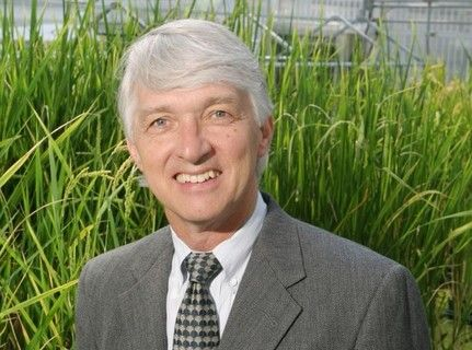 GMO pioneer: I got into biotech because I wanted to reduce the use of chemical pesticides