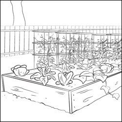 Vegetable Garden Coloring Page Garden Coloring Pages Farm