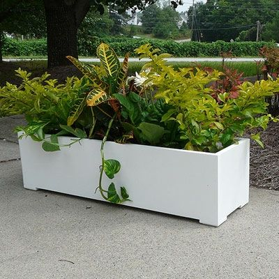 Pin By Karen Riley Campbell On Garden Outdoor Planters