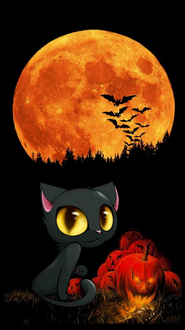 Zedge Free Downloads For Your Cell Phone Free Your Phone Fondos De Halloween Gato De Halloween