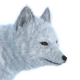 Image Arctic Fox Male Common Png The Hunter Wikia Fandom Arctic Fox Png Images Seal Pup