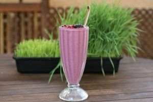 trenings smoothie www.melissaspania.no