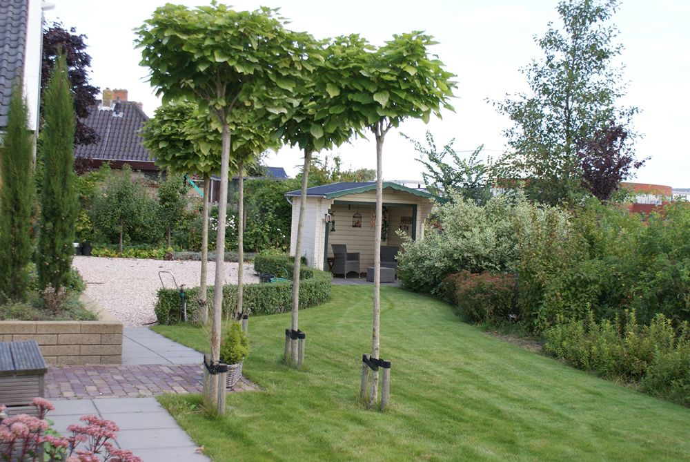 Pin van wilgard wouters op tuin pinterest for Tegels van dyck