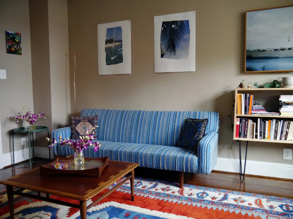 A Small D.C. Rental Apartment Has an EnvyInducing Rug and