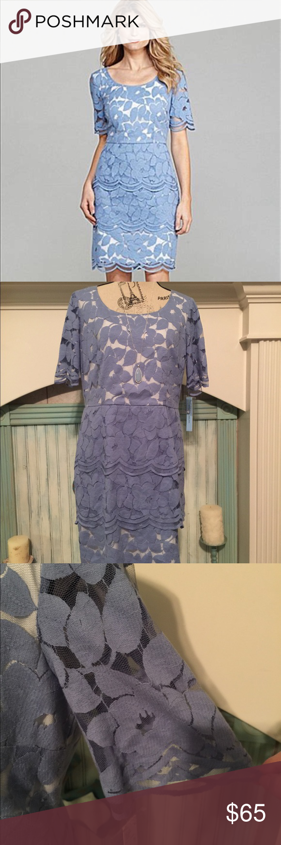 d5a5c152a09 NWT Antonio Melani Tatum floral lace dress 12 Beautifully made Antonio  Melani lace dress. Periwinkle blue color. Bought to wear in a wedding and  bride ...