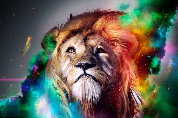 What's Your Spirit Animal?