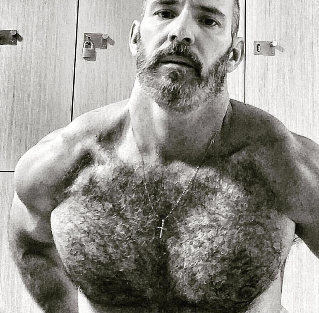 hairy chest - sexy muscle - mature men | bears,wolfs,otters