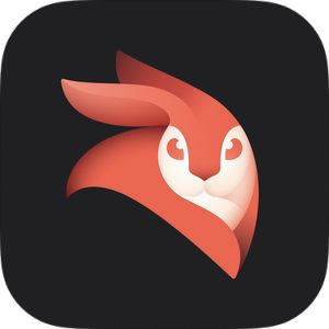 Enlight Videoleap Video Editor by Lightricks Ltd  | Lightricks Ltd