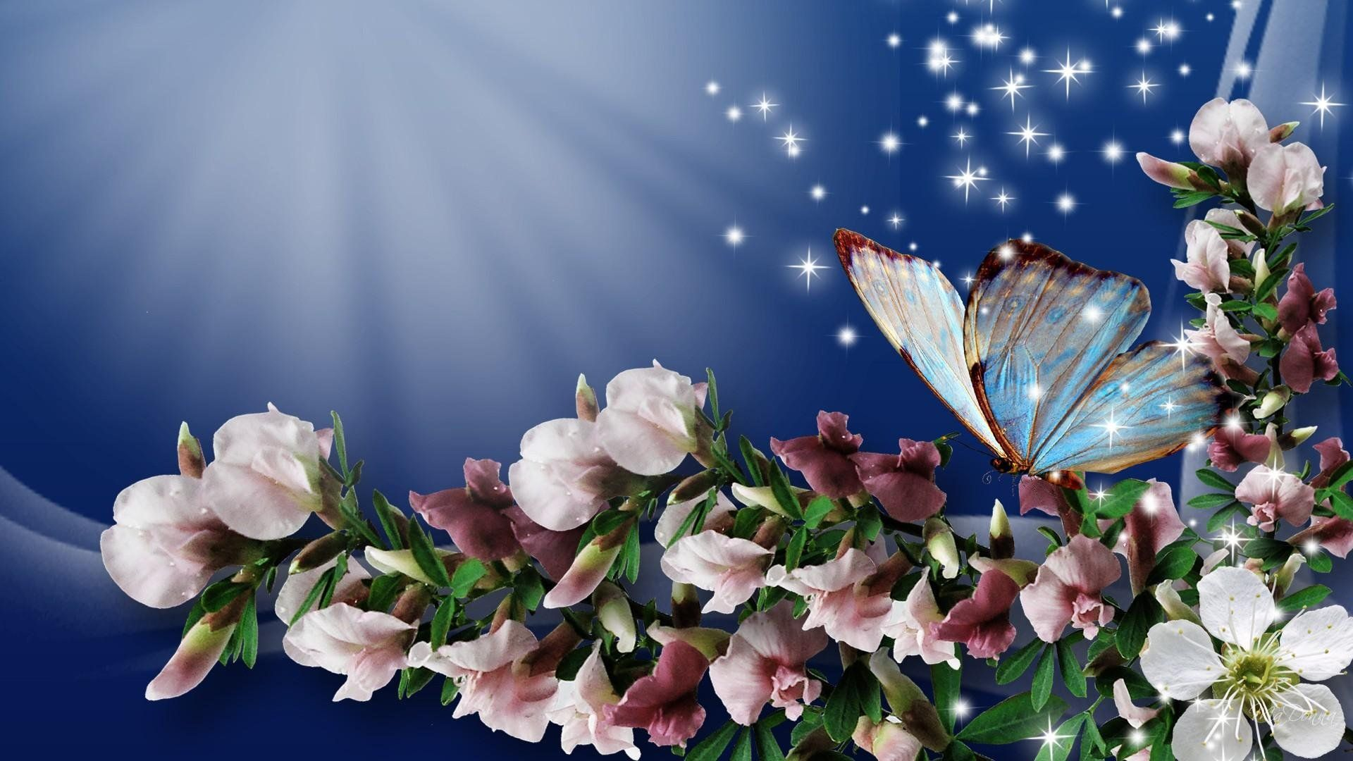Spring Flowers And Butterflies Wallpaper Wide Spring Wallpaper