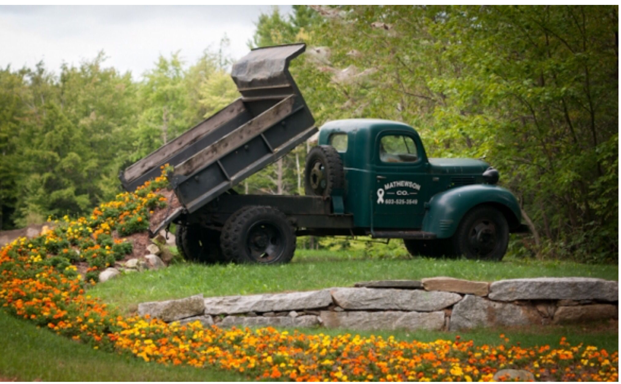 Antique dump truck in landscape. (With images) Lawn
