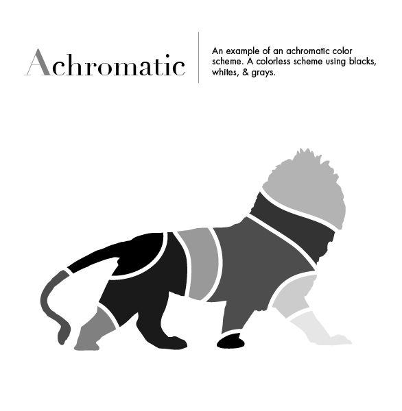 An Example Of Achromatic Color Scheme A Consisting Blacks Whites