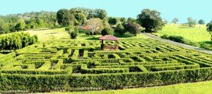 Travel To-Do's: A-Maze Yourself in November! (Blog post featuring fun ideas for travel in Australia)