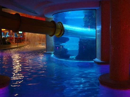 Swimming pools with slides swimming pool slide and aquarium backyards stairs and doors - Cool indoor pools with slides ...