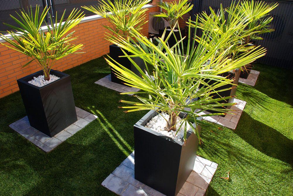 Jardín clásico,Jardín con bajo mantenimiento,Césped Artificial,Riego ...