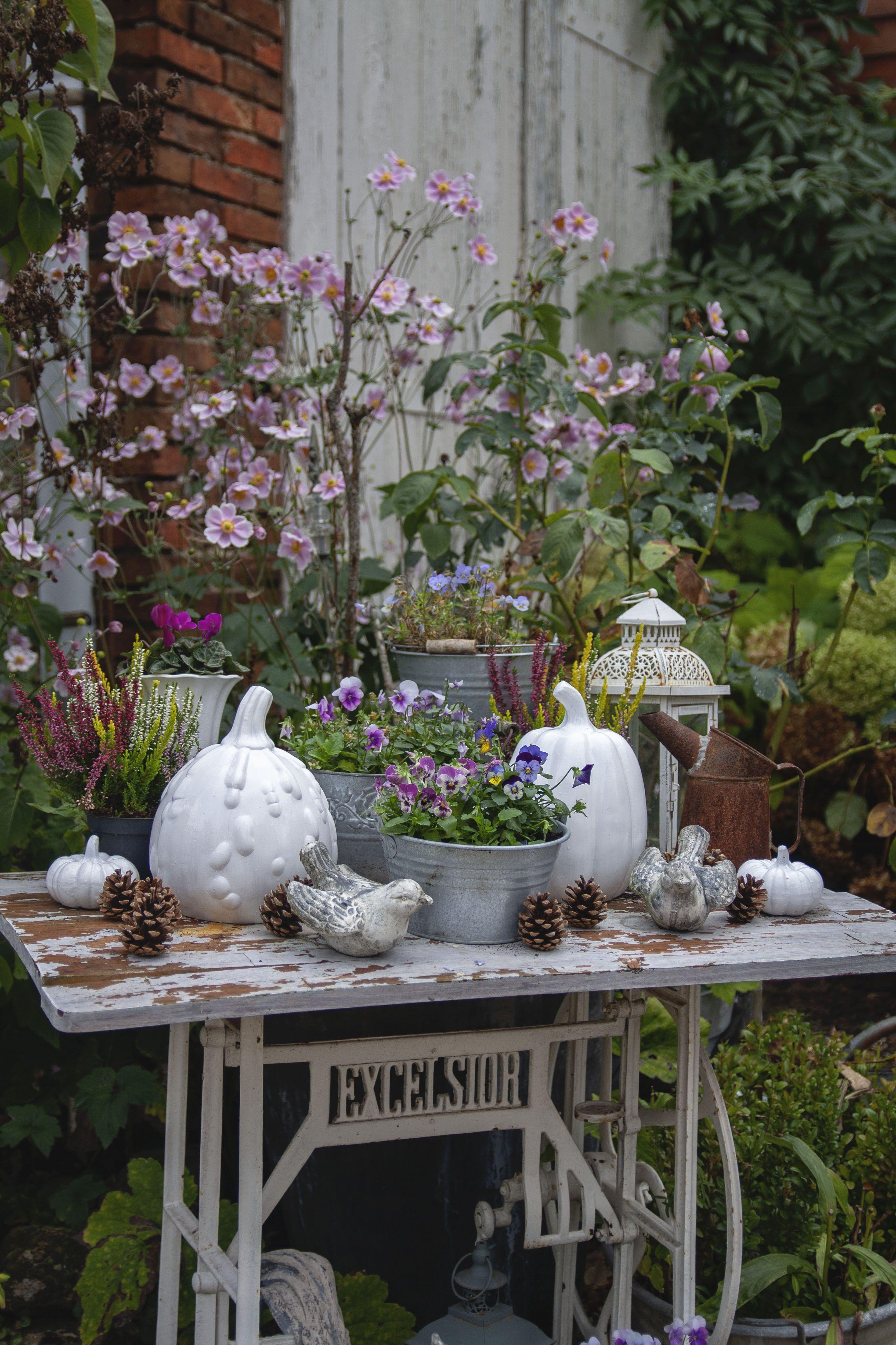 Evelyne Warchol S House Le Bonheur A La Campagne Guest House Champagne Ardenne Automn Fall Decor Antiq Decor Antique Decoration Foret D Orient