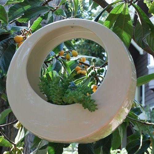 Design beautiful hanging gardens in your home – Gardening Clan