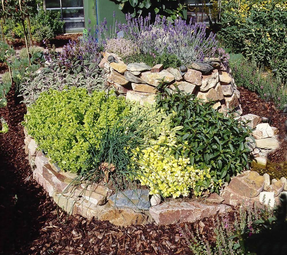 Krauterspirale Beete Pinterest Kraut Garten Und Krautergarten