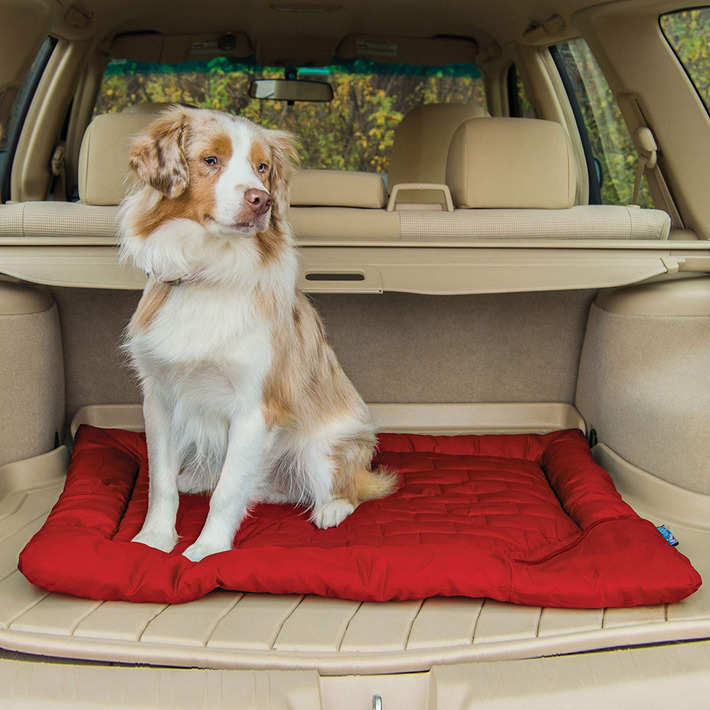 Best Dog Beds According To Dog Experts 2019 The Strategist New York Magazine Dog Bed Cool Dog Beds Dogs