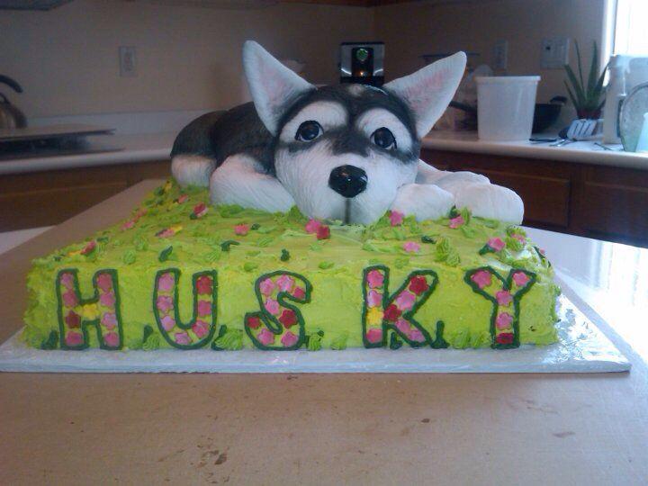 Husky Cake My Cakes And Cupcakes Pinterest Cake Puppy Cake