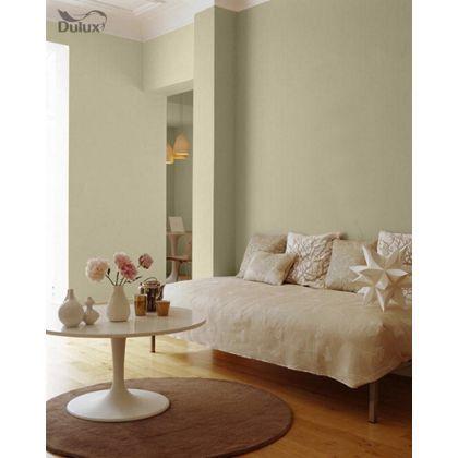 Dulux Jurassic Stone Living room Pinterest Stone Bedrooms