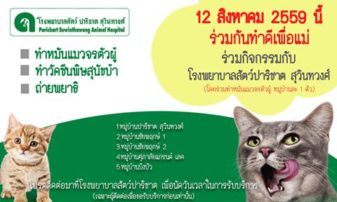 ก จกรรม ทำด ว นแม 12 ส งหาคม 2559 โรงพยาบาลส ตว ปาร ชาต ได จ ดทำก จกรรมข นเพ อ ทำหม นแมวจรต วผ ทำว คซ นพ ษส น ขบ า ถ าย ส ตว 12 ส งหาคม โรงพยาบาล