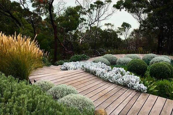 Melbourne Mornington Peninsula Garden Design Fest This Weekend Eco Outdoor Native Garden Coastal Gardens Garden Design