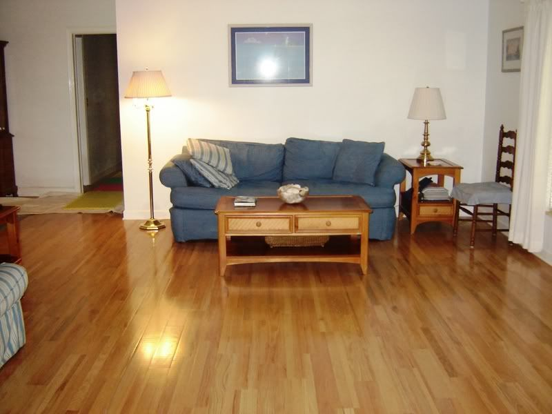 Living Room Floor Designs Prepossessing Living Room Ideas With Hardwood Floors  Flooring Ideas Living Decorating Design