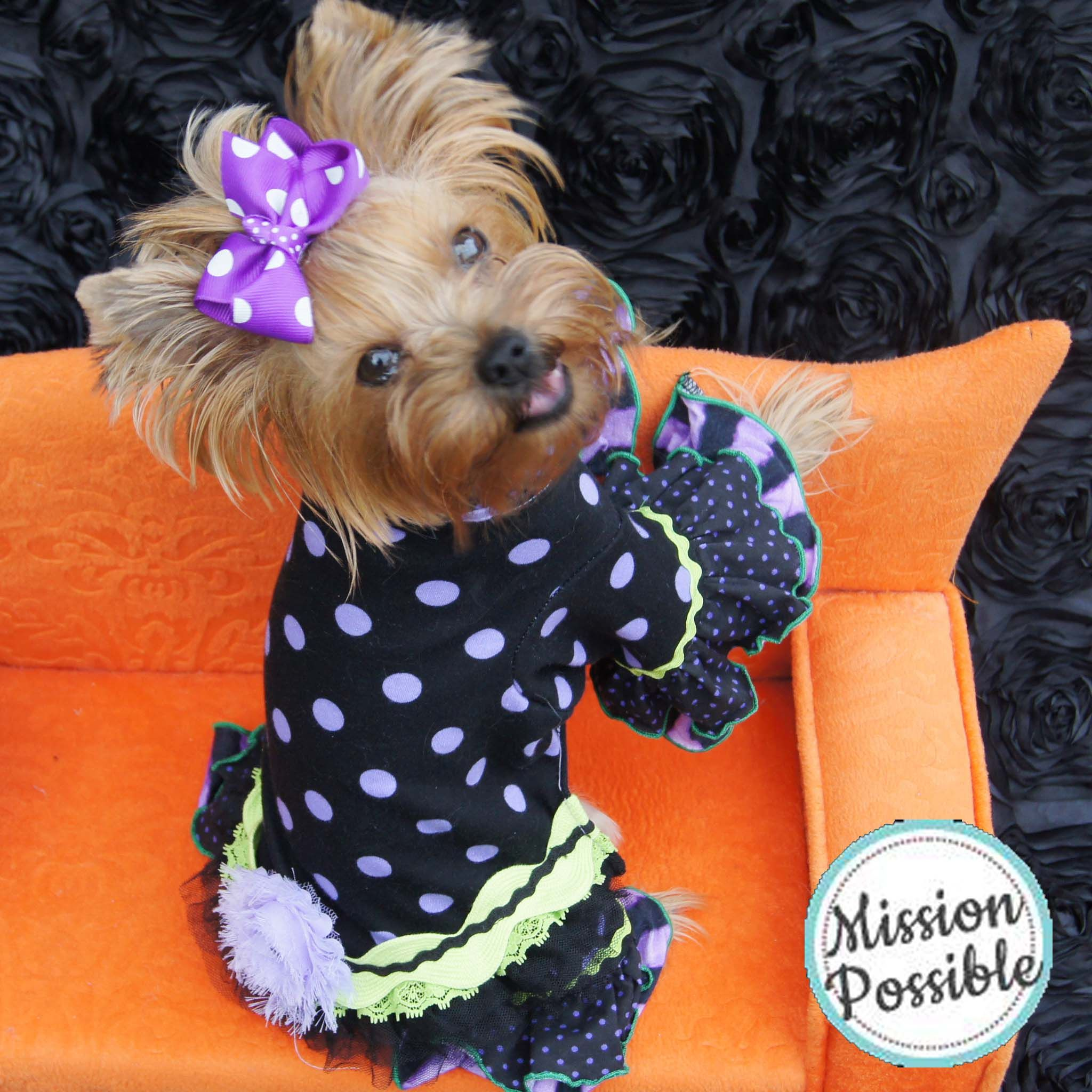 My Yorkie Puppy Pajamas! Dog, small dog Yorkie puppy