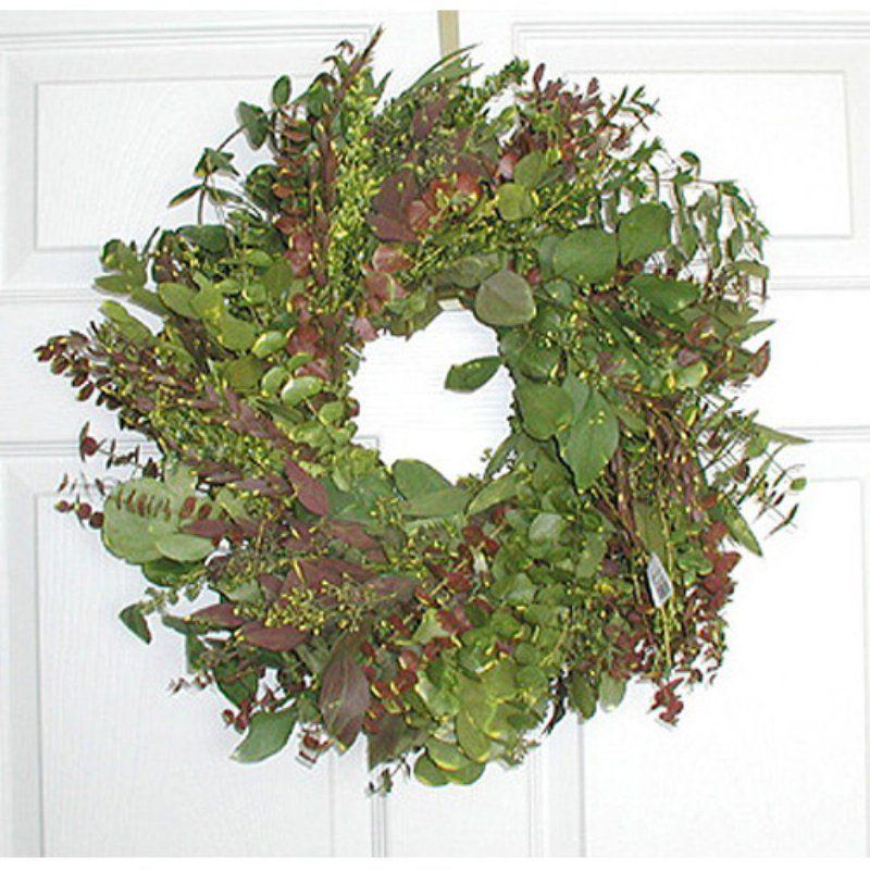 17 in. Blush Eucalyptus Wreath - WEBL001WPW