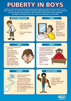 Puberty in Boys   PSHE Educational School Posters