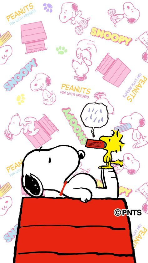 Snoopy Lying On Top Of His Doghouse With Woodstock Standing On