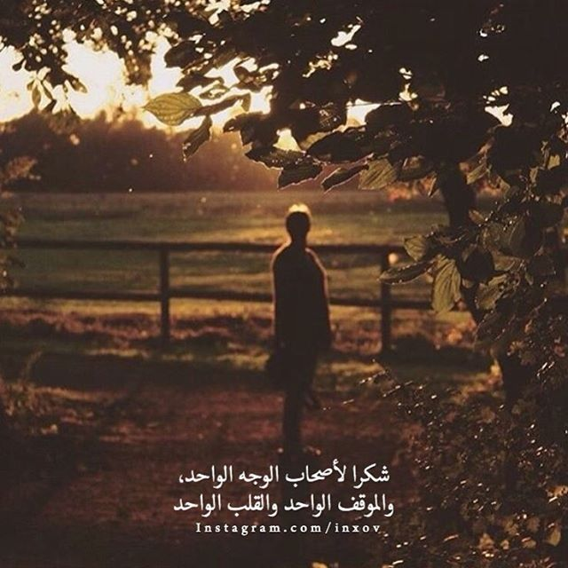 Ink361 The Instagram Web Interface Iphone Wallpaper Quotes Love Photo Quotes Arabic Love Quotes
