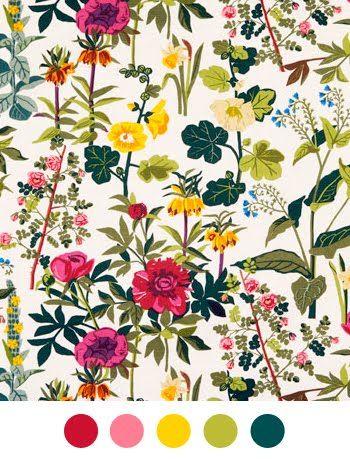 Color Collective Floral Wallpaper Prints Wallpaper