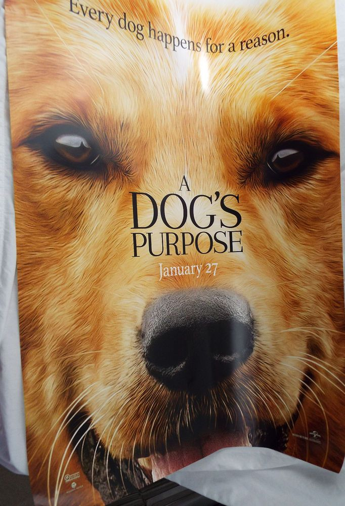 A Dog S Purpose 2017 Original 27x40 Theater Movie Poster Britt Robertson A Dogs Purpose Dogs Britt Robertson