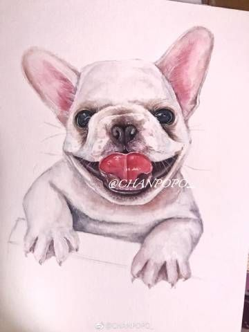 Pin By K Ras On Watercolour French Bulldog Animals Dogs