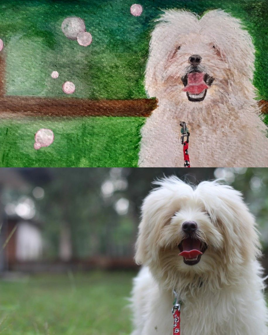 #watercolorpainting #art #artist #painting #watercolorart #watercolor #watercolour #artwork #artlovers #artlover #petlovers #wilsonspalette #wilsonspetpalette #angelwilson #lhasaapso #lhasaapsopuppy #puppylife #pet #pets #dog #dogs #puppylove #puppy #lhasa #lhasalovers #lhasaapsos