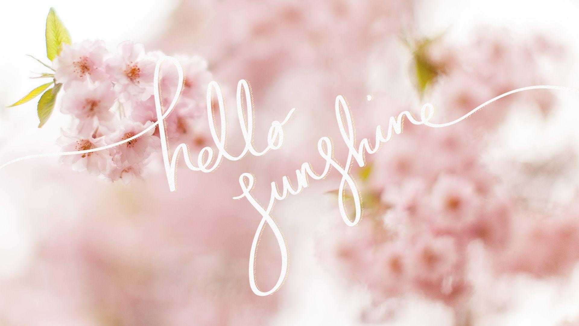 Hello Sunshine Wallpaper Spring Desktop Wallpaper Computer Wallpaper Desktop Wallpapers Spring Wallpaper