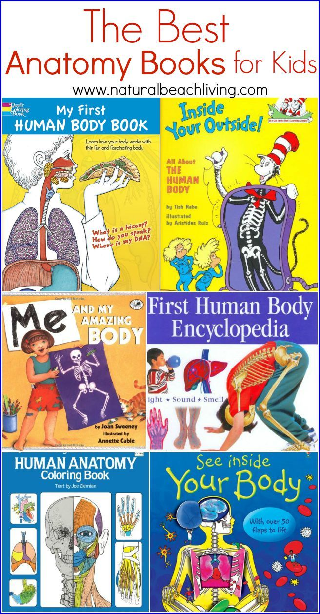 The Best Anatomy Books & Learning Aids for Kids | Kids hands, Health ...