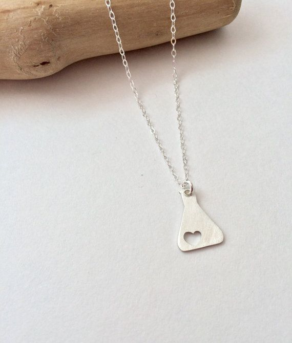 Science Erlenmeyer Flask Chemistry Necklace By Ladywatsondesigns Idee