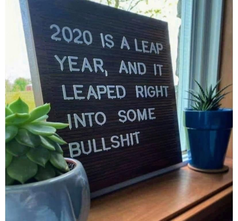Pin By Judy Maney On Quotes In 2020 Memes Stupid Funny This Is Fine Meme