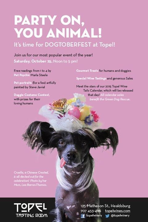 Join Us This Saturday For Our Most Popular Event Of The Year Free Readings From 1 00pm 4 00pm By Pet Psychic Marla St Pet Psychic Dressed Up Dogs Dog Party
