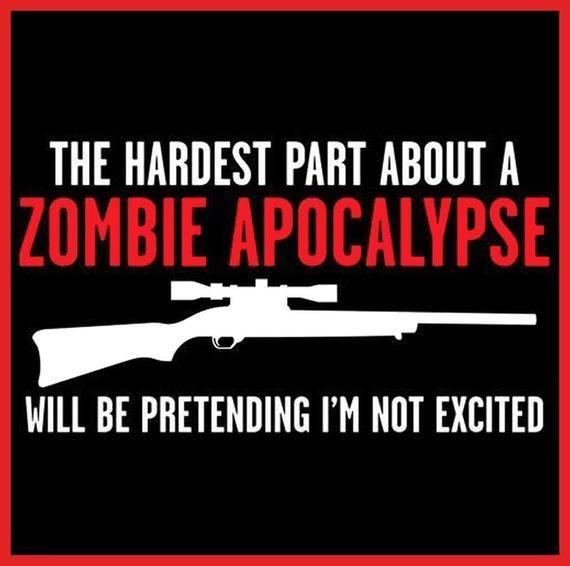 Anime Zombie Apocalypse Survivor ` Anime Zombie Apocalypse Survivor