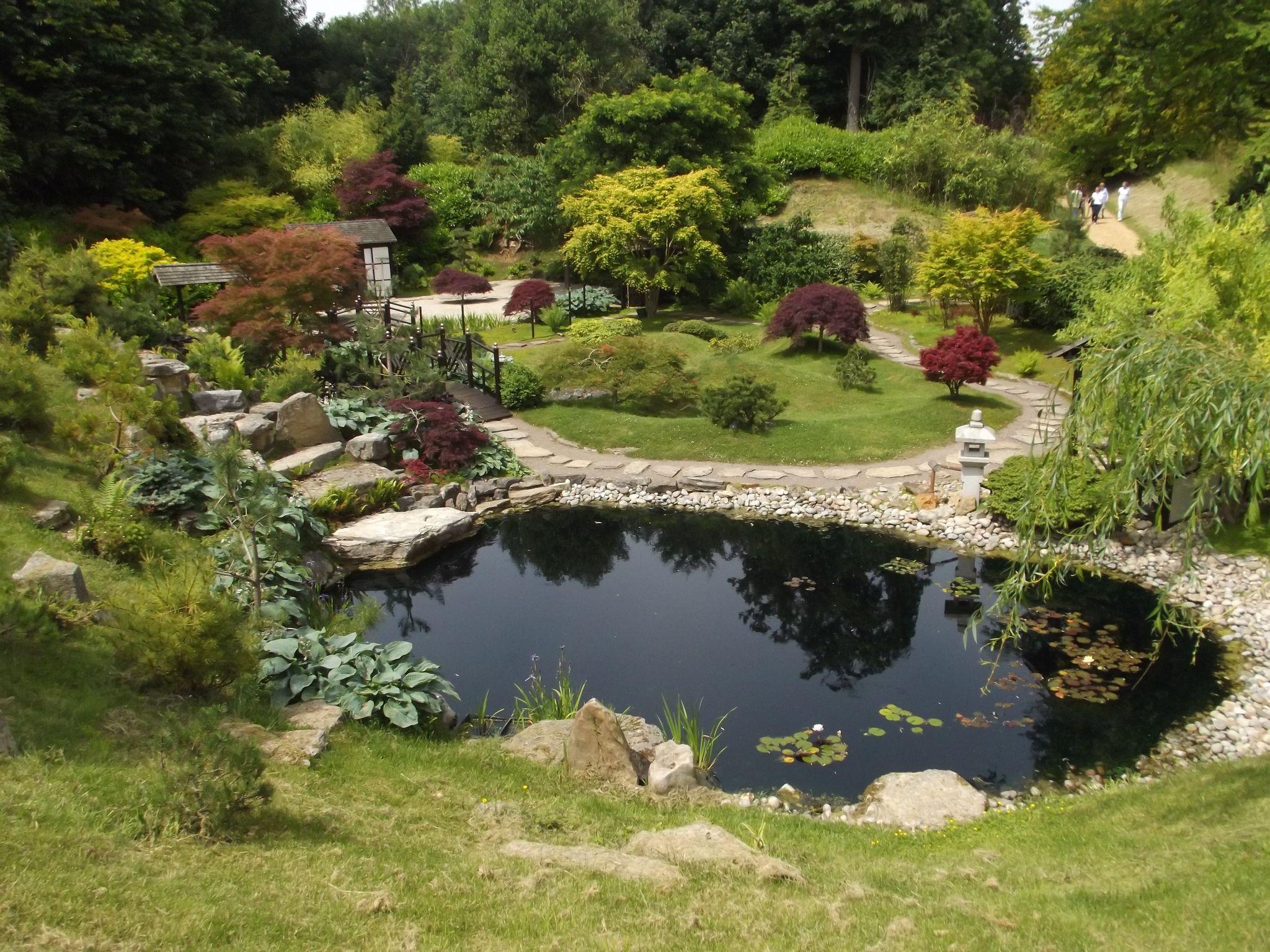 Man Made Duck Ponds Google Search Idees Jardin Jardins
