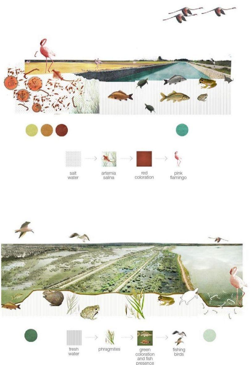 The Best Landscape Plan Drawing Section No 131 — Design & Decorating #landscapeplans