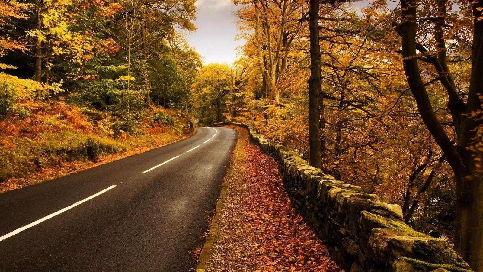 Simple Wallpaper Mac Autumn - 007b92bf6b045fcbf8732f7047d6c4bb  Pic_885261.jpg