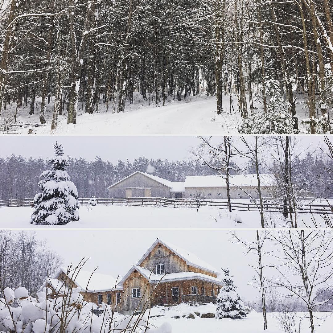 #sundaymorning #visit #winterwonderland #lacbrome #barn #horse #engelvolkers #engelvoelkers #deslauriersfortin #immobilier #realestate