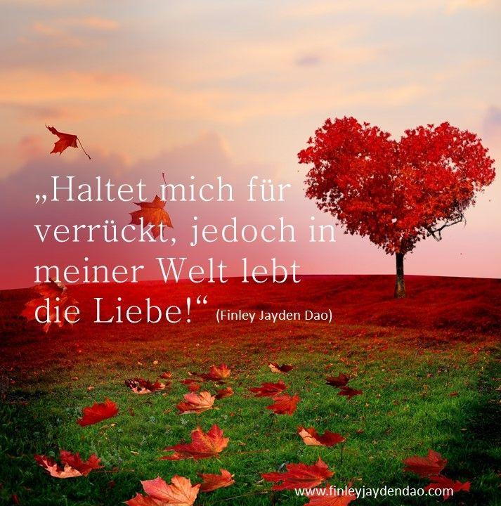 Titel: Die Liebe lebt in meinen Garten Text u. geistiges Eigentum: Finley Jayden Dao Bildquelle: Bigstock auf web: www.finleyjaydendao (at) com   #finleyjaydendao #zitate #zitat #garten #natur #liebe #love