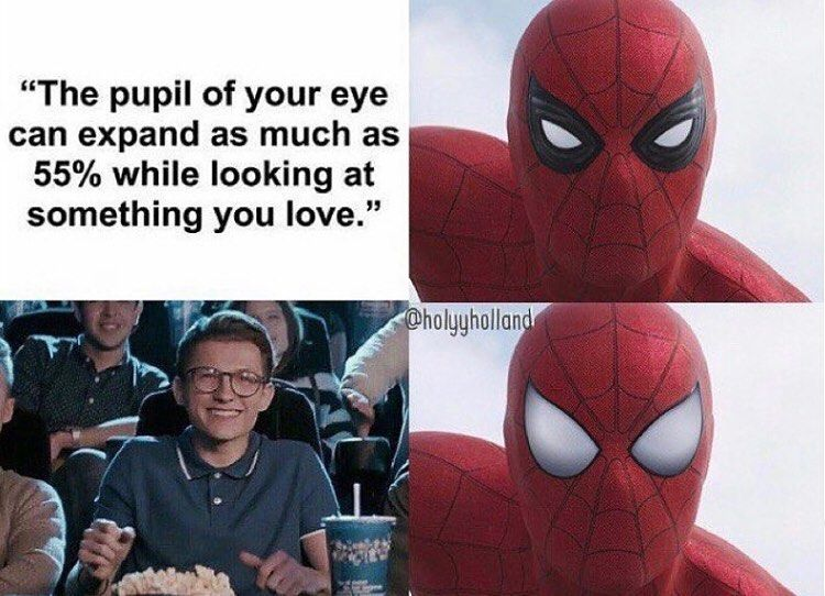 Tomholland Spiderman Peterparker Hollanders Memesoftheholland Is Sharing Instagram Posts And You Can See Pictur Tom Holland Tom Holland Spiderman Holland