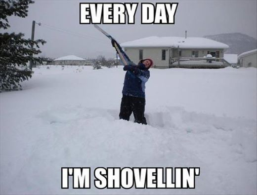 Funny Memes For Snow : Funny snowstorm pictures memes humor and funny memes
