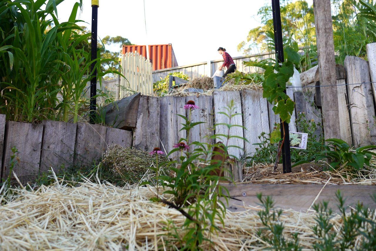 1402-good-life-permaculture13.jpg 1,280×855 pixels